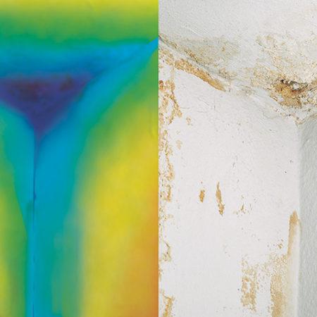 Schimmel sichtbar durch ein Thermoradar